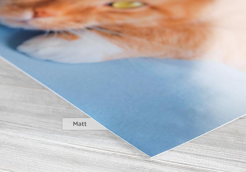 Matt reduziert Reflektionen auf ein Minimum und erzielt gleichzeitig eine besonders natürliche Farbwiedergabe